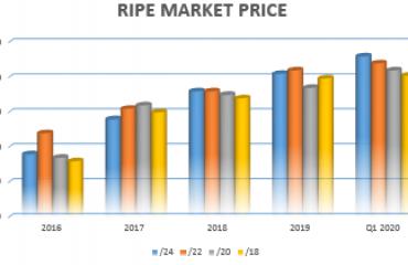 ripe_ip-price